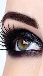 Fotos Augen Großansicht Wimper Makro Make Up junge frau