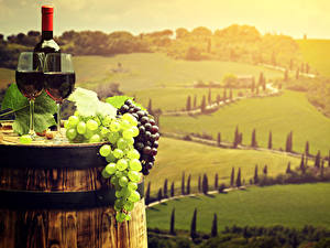 Hintergrundbilder Italien Toskana Felder Wein Weintraube Fass Weinglas Lebensmittel