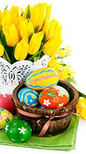 Bilder Feiertage Ostern Tulpen Weißer hintergrund Ei Blüte