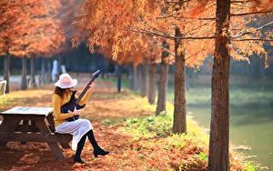 Bilder Park Herbst Gitarre Sitzend Der Hut Natur Mädchens
