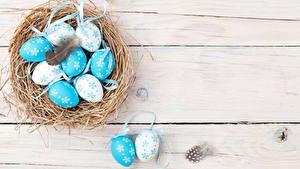 Hintergrundbilder Feiertage Ostern Federn Bretter Eier Nest