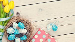 Bilder Feiertage Ostern Tulpen Federn Ei Bretter Nest