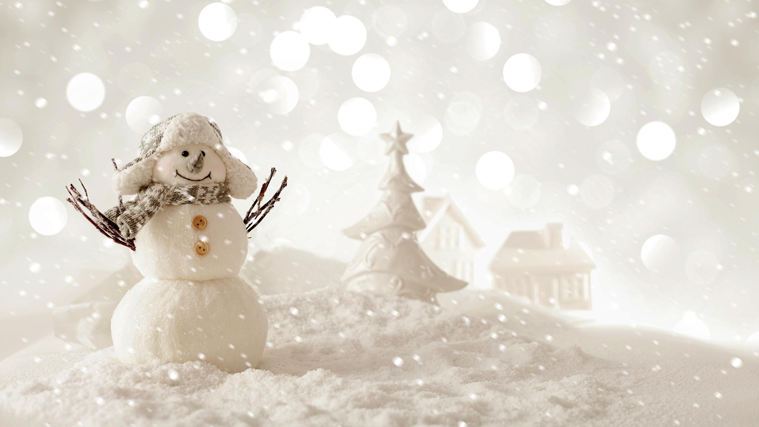 壁紙 2560x1440 新年 冬 雪だるま 雪 暖かい帽子 スカーフ 襟
