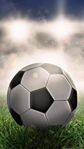 Bilder Fußball Ball Gras Sport