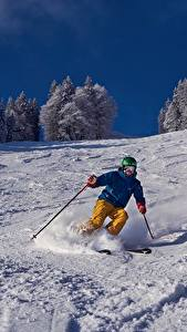 Picture Skiing Winter Man Snow Sport
