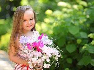 Fotos Sträuße Kleine Mädchen Dunkelbraun Blick Niedlich Kinder