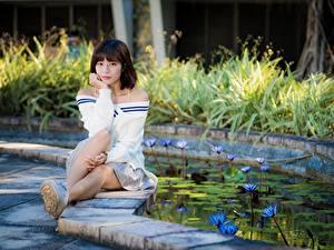 Fotos Asiaten Teich Posiert Sitzt Braunhaarige Starren Mädchens