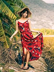 Hintergrundbilder Acker Asiaten Posiert Kleid Der Hut Brünette junge frau