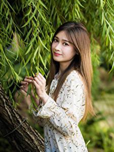 Bilder Asiatische Ast Kleid Hand Braunhaarige Blick junge frau