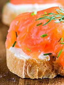 Hintergrundbilder Butterbrot Fische - Lebensmittel Brot