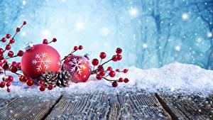 Bilder Neujahr Winter Beere Bretter Schnee Zapfen Ast Kugeln