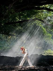 Bilder Wälder Lichtstrahl Mädchens