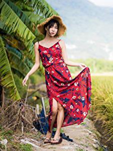 Bilder Asiatisches Felder Brünette Kleid Der Hut Pose Mädchens