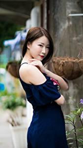 Bilder Asiaten Unscharfer Hintergrund Braune Haare Starren Kleid Posiert junge frau
