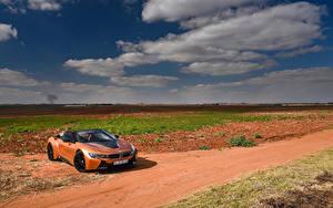 Fotos BMW Orange Cabrio Roadster 2018 i8 Autos