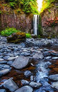 Bilder Vereinigte Staaten Wasserfall Steine Felsen Abiqua Falls Oregon Natur
