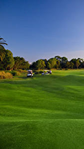 Fotos Golf Rasen