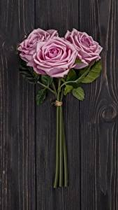 Wallpapers Roses Pink color Three 3 Wood planks Flowers