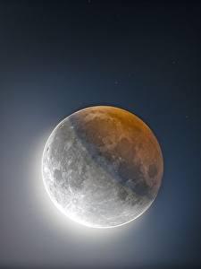 Bilder Großansicht Mond Weltraum