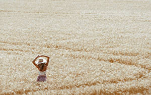Bilder Acker Weizen Mädchens