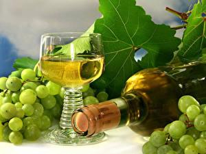 Hintergrundbilder Wein Weintraube Weinglas Flasche
