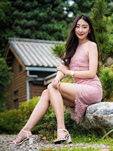 Bilder Asiaten Sitzt Kleid Bein Brünette Niedlich junge frau