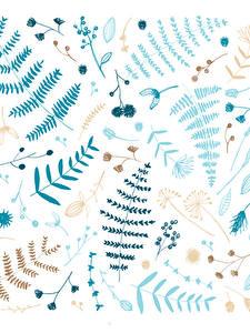 Hintergrundbilder Pflanzen Weißer hintergrund Blattwerk Ast Nathalie Ouederni