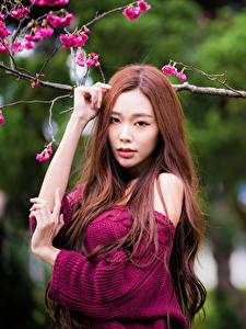Hintergrundbilder Asiaten Ast Hand Blick Mädchens
