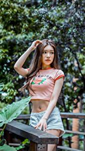 Fotos Asiaten Shorts T-Shirt Braune Haare junge frau