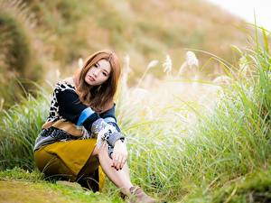 Bilder Asiatisches Bokeh Posiert Sitzen Blick Braune Haare Mädchens