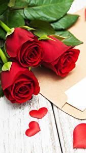 Bilder Valentinstag Rosen Bretter Rot Drei 3 Herz Brief Blumen