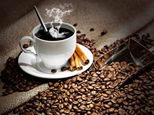 Fotos Kaffee Zimt Tasse Getreide Dampf Lebensmittel