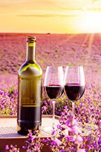 Fotos Sonnenaufgänge und Sonnenuntergänge Wein Lavendel Flasche Weinglas Zwei das Essen