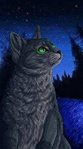Fotos Katze Gezeichnet Nacht Tiere