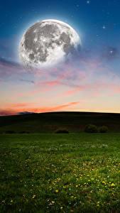 Bilder Himmel Abend Grünland Mond Gras