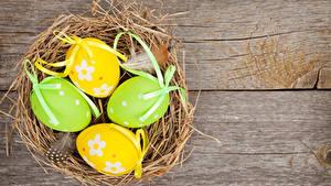 Fotos Feiertage Ostern Bretter Ei Nest