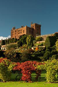 Fotos Vereinigtes Königreich Parks Design Strauch Rasen Bäume Wales Powis Castle Garden