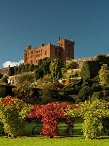 Fotos Vereinigtes Königreich Park Design Strauch Rasen Bäume Wales Powis Castle Garden Natur