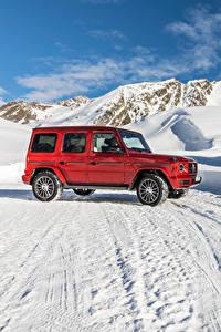 Bilder Mercedes-Benz Rot Sport Utility Vehicle 2019 G 350 d AMG Line Worldwide Autos