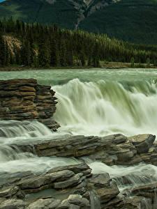 Bilder Kanada Park Wasserfall Jasper park Athabasca Falls Natur