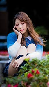 Desktop hintergrundbilder Asiatische Park Niedlich Bokeh Braunhaarige Sitzen Mädchens