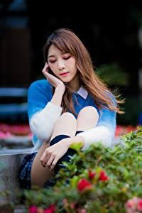 Hintergrundbilder Asiaten Park Niedlich Bokeh Braunhaarige Sitzen Mädchens