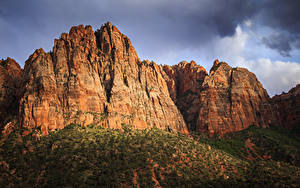 Bilder Zion-Nationalpark USA Park Felsen Natur