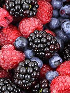 Pictures Berry Blackberry Blueberries Raspberry Closeup