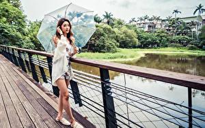 Bilder Asiaten Brücke Posiert Braunhaarige Regenschirm Blick junge Frauen