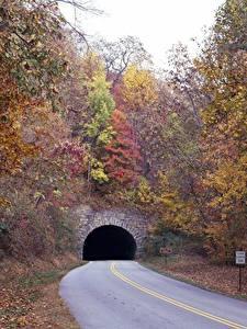 Hintergrundbilder Herbst Wege Bäume Tunnel