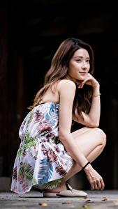 Hintergrundbilder Asiatische Sitzt Blick Braunhaarige junge Frauen