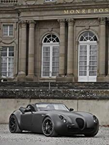 桌面壁纸,,维泽曼,灰色,敞篷车,雙座敞篷車,2011 Roadster MF5 Black Bat,汽车