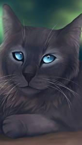 Fotos Katze Gezeichnet Grau ein Tier