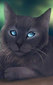 デスクトップの壁紙、、飼い猫、描かれた壁紙、灰色、動物